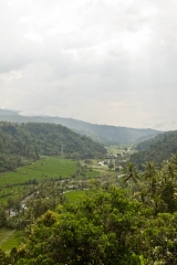 Valley view, Papuan, West Bali